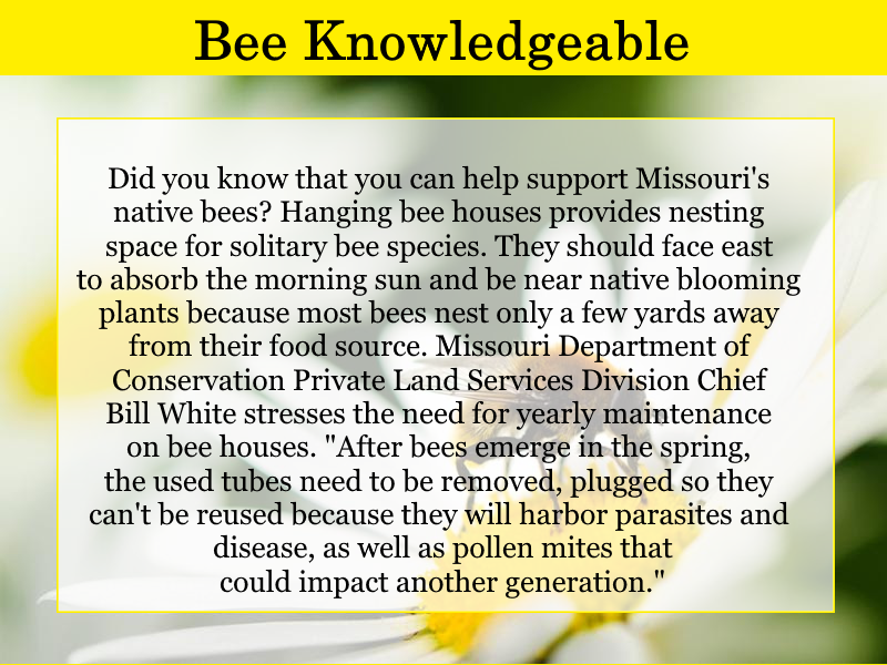bee-knowledgeable-april