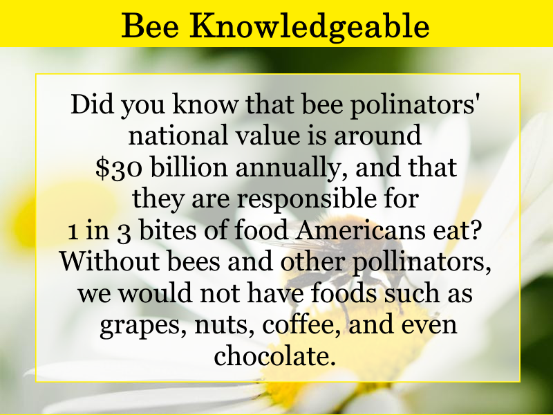 bee-knowledgeable-may